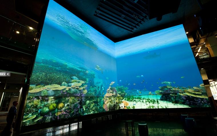 Virtual Reef [Ejemplo2]
