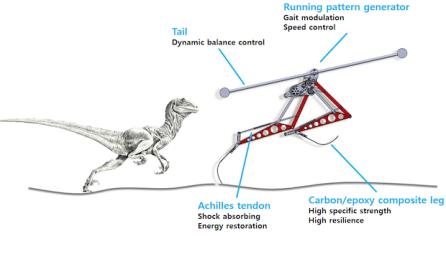Raptor [Imagen1]